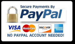 Paypal secure button image